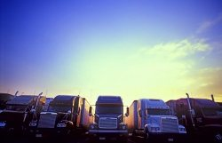 multiple big rigs lined up